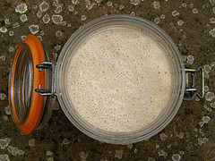 Sourdough Starter | HealthE Coaching